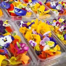 Edible Flowers 30g